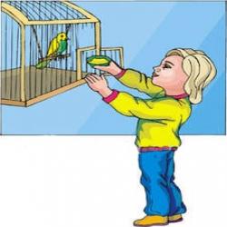 حكاية ليلى والعصفور السجين