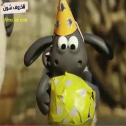 شون الخروف - عيد ميلاد سعيد تيمي