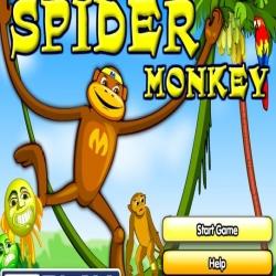 لعبة القرد العنكبوت