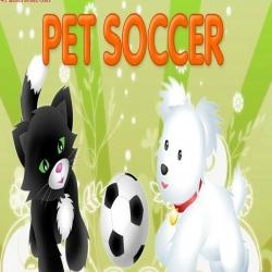 لعبة مباراة الكلاب والقطط