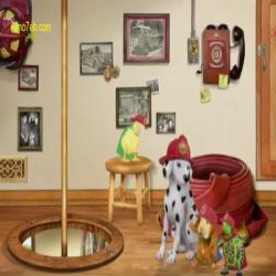 الحيوانات المدهشة - ثلاثي العجب يساعدون الكلب المرقط