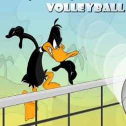 لعبة Daffy Duck وكرة الطائرة