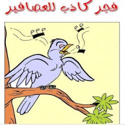 قصة فجر كاذب للعصافير