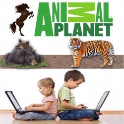 ثلاث اسطوانات العاب Animal Planet التعليمية للاطفال