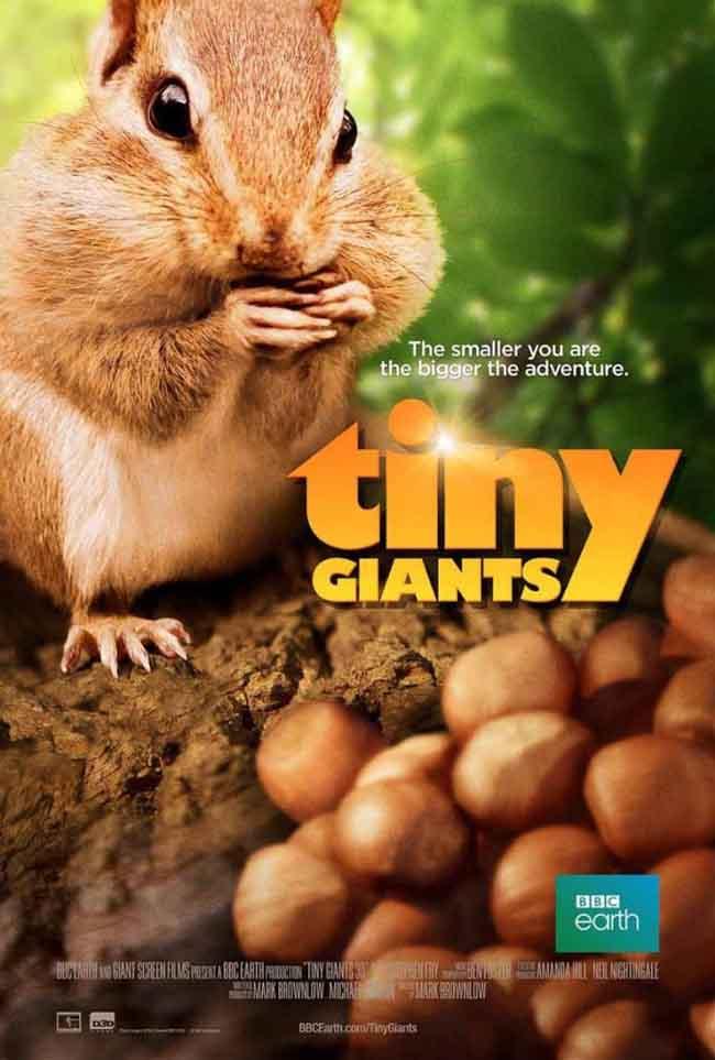 فلم الكرتون الانيميشن والمغامرات العمالقه الصغار : Tiny Giants 3D 2014 مترجم للعربيه