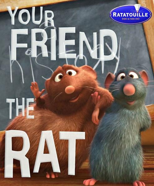 نتيجة بحث الصور عن Your Friend the Rat